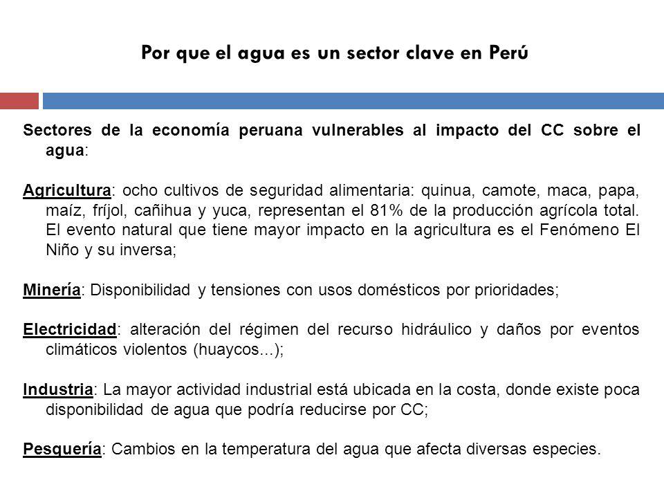 Por que el agua es un sector clave en Perú Sectores de la economía peruana vulnerables al impacto del CC sobre el agua: Agricultura: ocho cultivos de