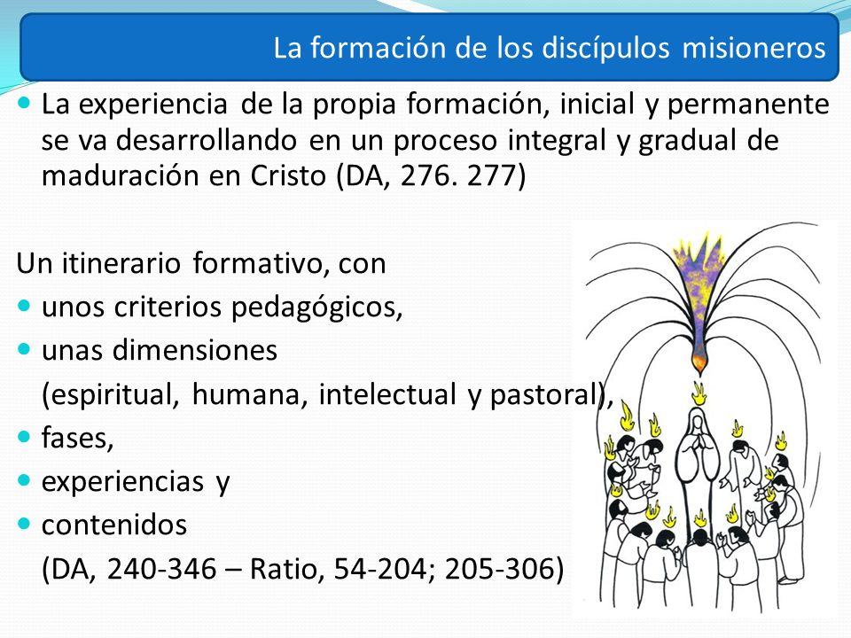 La experiencia de la propia formación, inicial y permanente se va desarrollando en un proceso integral y gradual de maduración en Cristo (DA, 276. 277