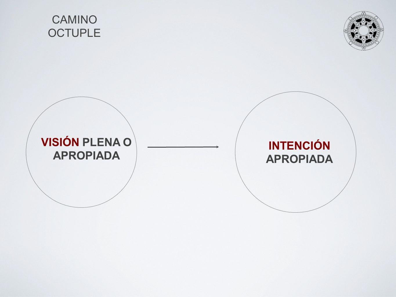 CAMINO OCTUPLE INTENCIÓN NO APROPIADA VISIÓN PARCIAL (IGNORANCIA)