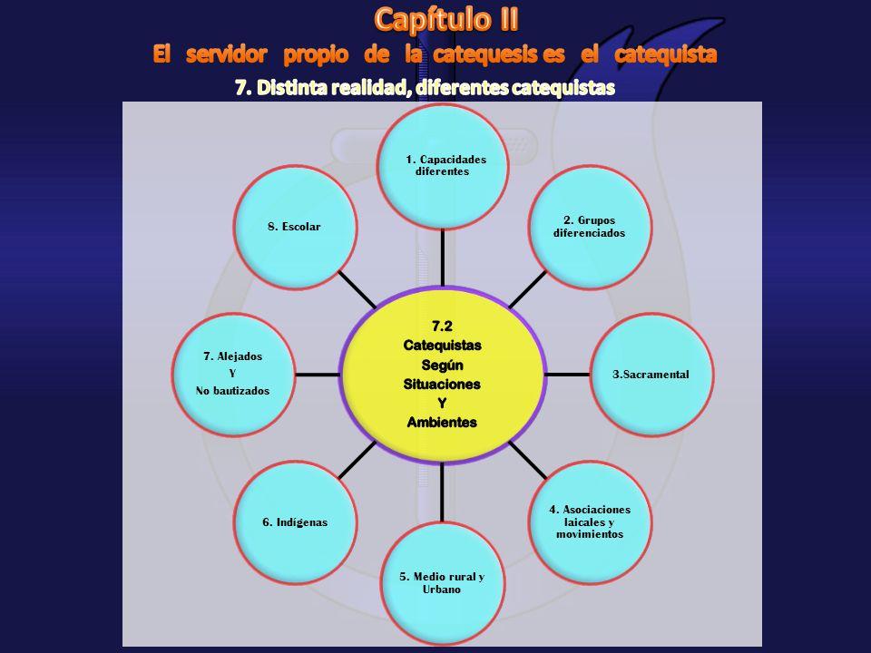 1. Capacidades diferentes 2. Grupos diferenciados 3.Sacramental 4. Asociaciones laicales y movimientos 5. Medio rural y Urbano 6. Indígenas 7. Alejado