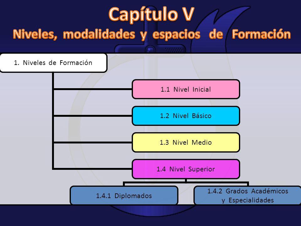1. Niveles de Formación 1.1 Nivel Inicial 1.2 Nivel Básico 1.3 Nivel Medio 1.4 Nivel Superior 1.4.1 Diplomados 1.4.2 Grados Académicos y Especialidade