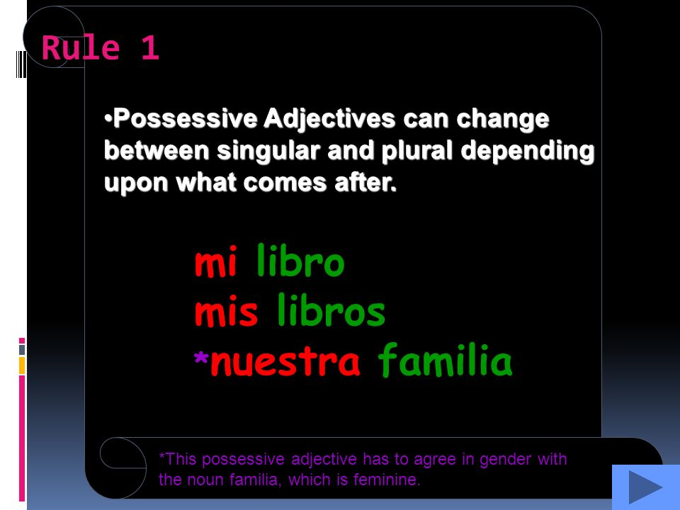 Possessive Adjectives can change between singular and plural depending upon what comes after.Possessive Adjectives can change between singular and plural depending upon what comes after.