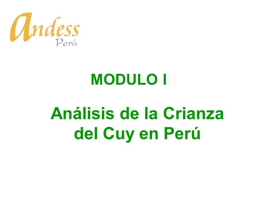 Análisis de la Crianza del Cuy en Perú MODULO I