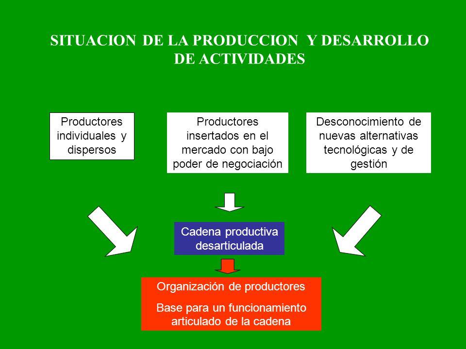 SITUACION DE LA PRODUCCION Y DESARROLLO DE ACTIVIDADES Organización de productores Base para un funcionamiento articulado de la cadena Productores ind