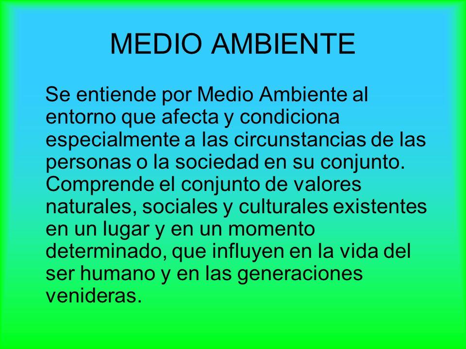 MEDIO AMBIENTE Se entiende por Medio Ambiente al entorno que afecta y condiciona especialmente a las circunstancias de las personas o la sociedad en s