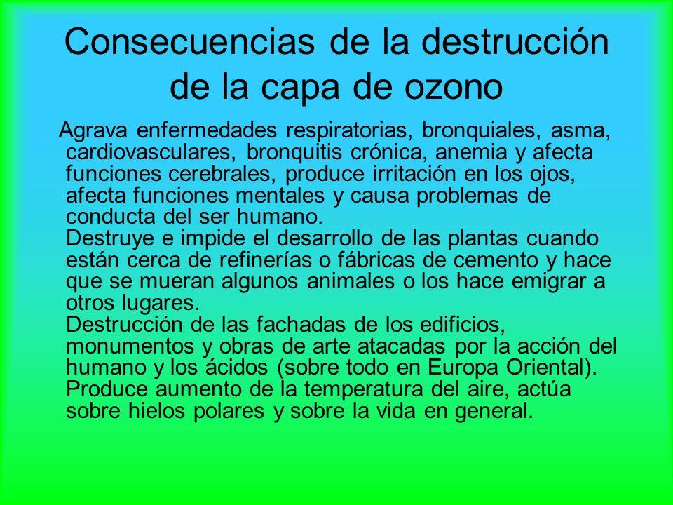 Consecuencias de la destrucción de la capa de ozono Agrava enfermedades respiratorias, bronquiales, asma, cardiovasculares, bronquitis crónica, anemia