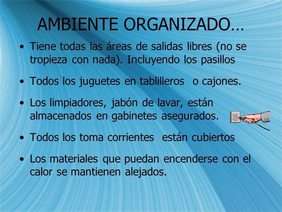 Sugerencias … ambiente organizado En caso de una EMERGENCIA unambiente organizado le permitirá a usted y a los niños … SALIR VIVOS!!!