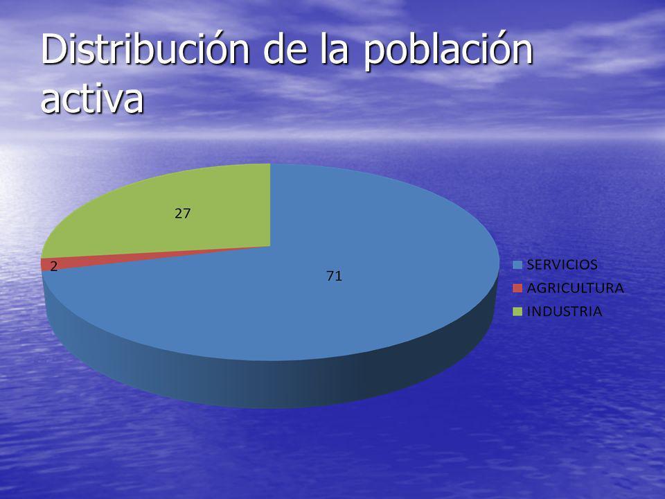 Distribución de la población activa