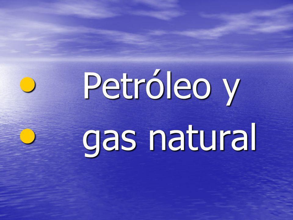 Petróleo y Petróleo y gas natural gas natural