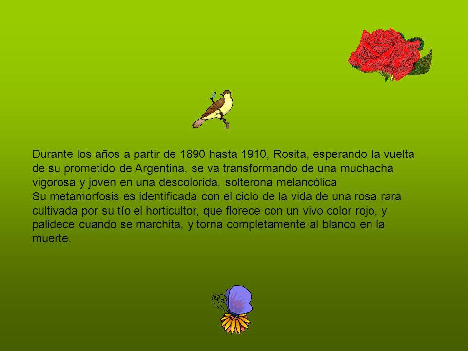 Durante los años a partir de 1890 hasta 1910, Rosita, esperando la vuelta de su prometido de Argentina, se va transformando de una muchacha vigorosa y