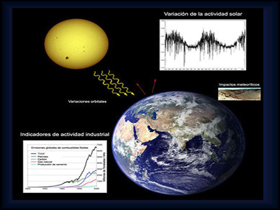 Acidificación: La lluvia ácida es un importante problema global.