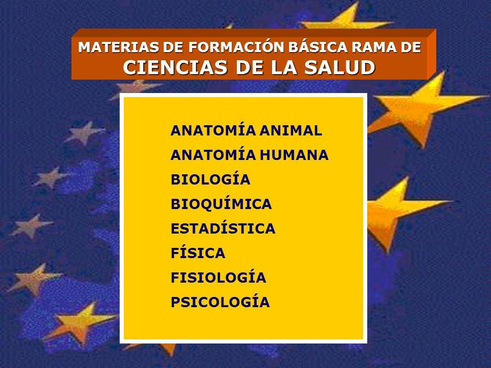 MATERIAS DE FORMACIÓN BÁSICA RAMA DE CIENCIAS DE LA SALUD ANATOMÍA ANIMAL ANATOMÍA HUMANA BIOLOGÍA BIOQUÍMICA ESTADÍSTICA FÍSICA FISIOLOGÍA PSICOLOGÍA