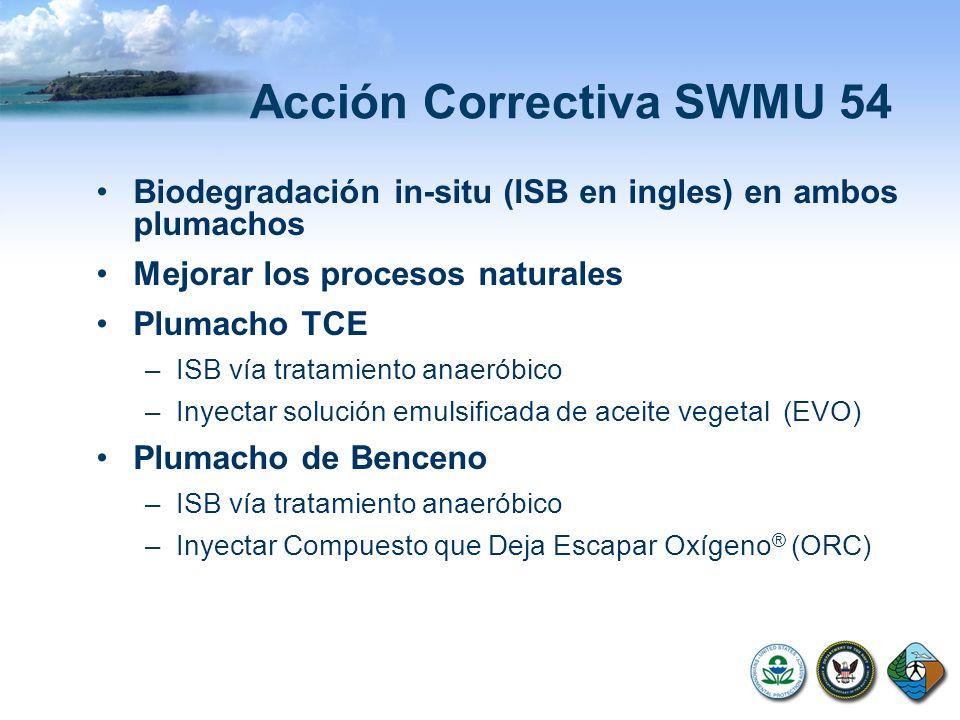 Acción Correctiva SWMU 54 Biodegradación in-situ (ISB en ingles) en ambos plumachos Mejorar los procesos naturales Plumacho TCE –ISB vía tratamiento a