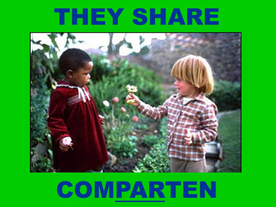 THEY SHARE COMPARTEN