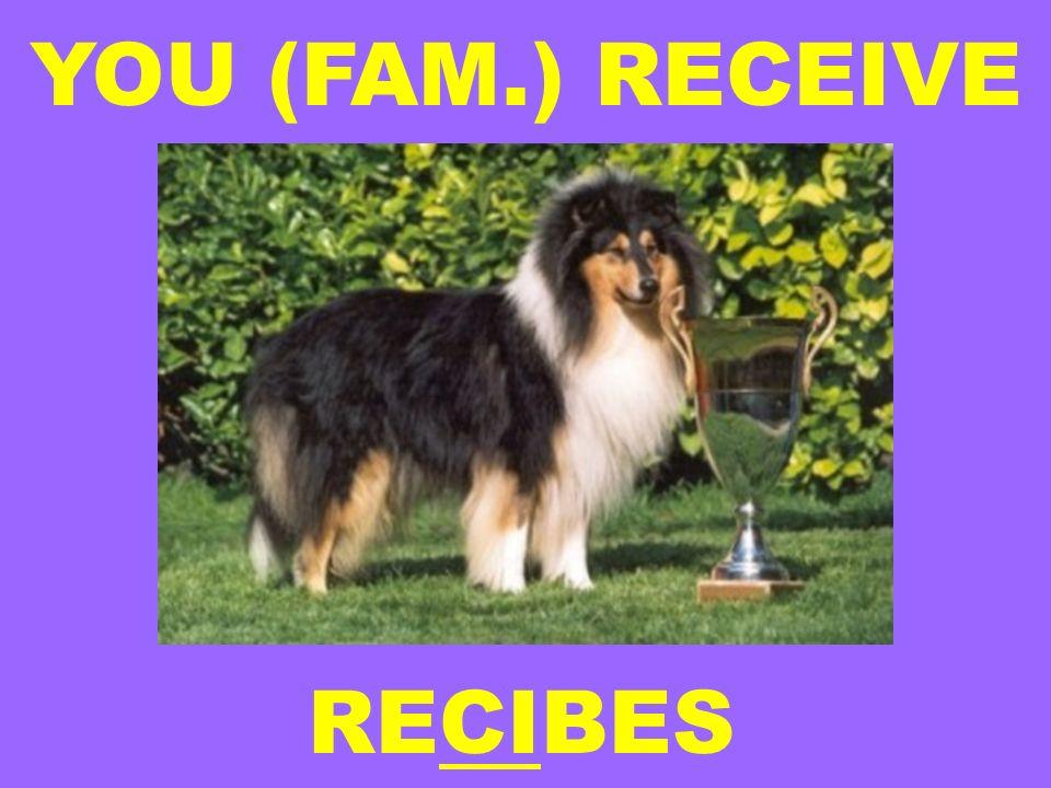 YOU (FAM.) RECEIVE RECIBES