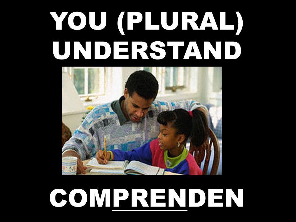YOU (PLURAL) UNDERSTAND COMPRENDEN