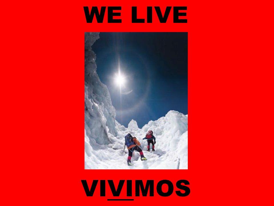 WE LIVE VIVIMOS