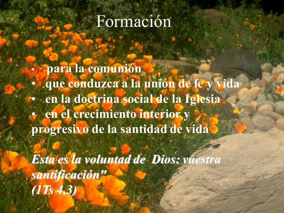 Formación para la comunión que conduzca a la unión de fe y vida en la doctrina social de la Iglesia en el crecimiento interior y progresivo de la santidad de vida Esta es la voluntad de Dios: vuestra santificación (1Ts 4,3)