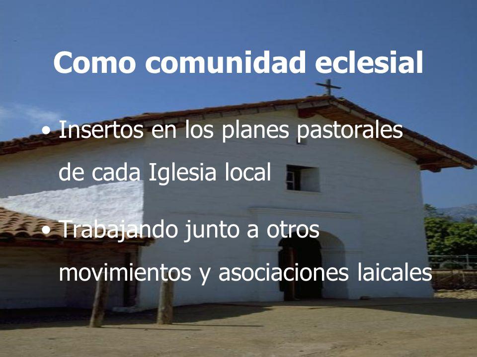 Como comunidad eclesial Insertos en los planes pastorales de cada Iglesia local Trabajando junto a otros movimientos y asociaciones laicales