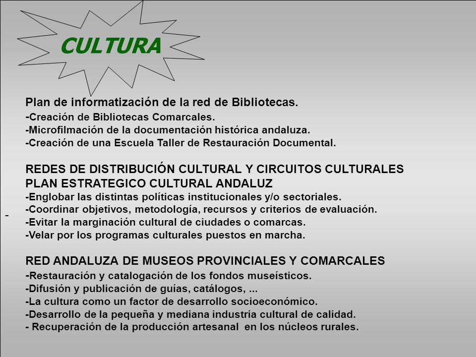 - Plan de informatización de la red de Bibliotecas. - Creación de Bibliotecas Comarcales. -Microfilmación de la documentación histórica andaluza. -Cre