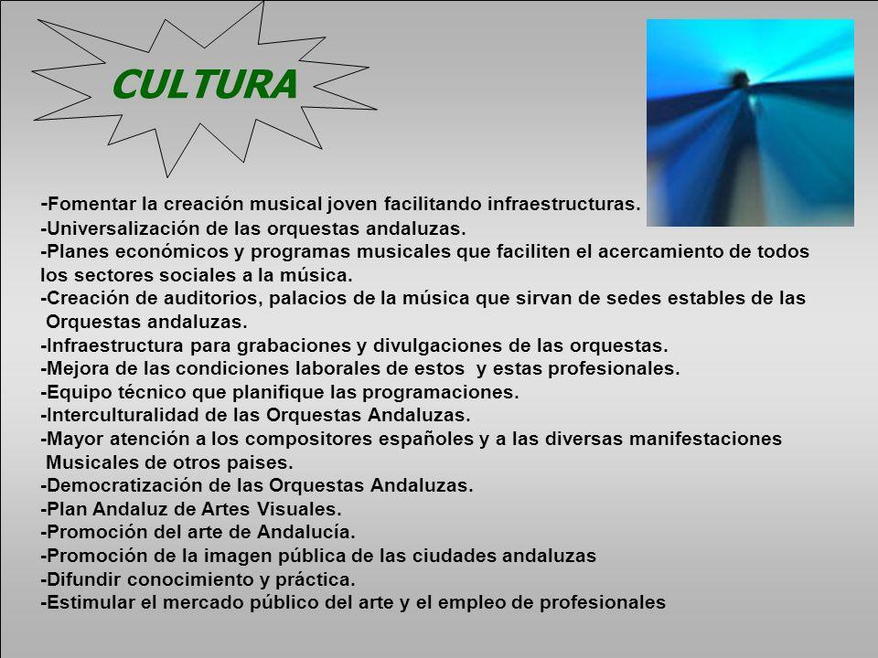 CULTURA - Fomentar la creación musical joven facilitando infraestructuras. -Universalización de las orquestas andaluzas. -Planes económicos y programa