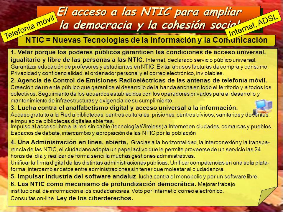 El acceso a las NTIC para ampliar la democracia y la cohesión social El acceso a las NTIC para ampliar la democracia y la cohesión social NTIC = Nueva