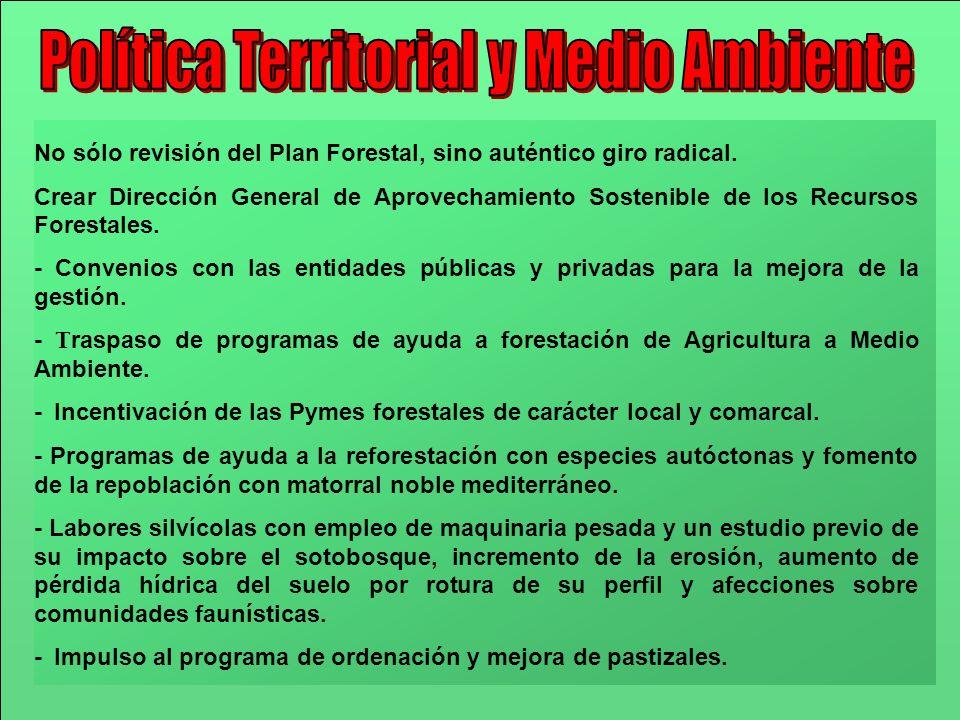 No sólo revisión del Plan Forestal, sino auténtico giro radical. Crear Dirección General de Aprovechamiento Sostenible de los Recursos Forestales. - C