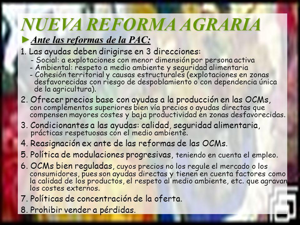 NUEVA REFORMA AGRARIA Ante las reformas de la PAC:Ante las reformas de la PAC: 1. Las ayudas deben dirigirse en 3 direcciones: - Social: a explotacion