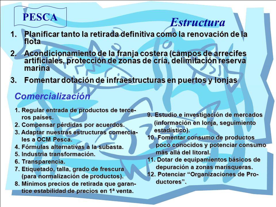 PESCA Estructura 1.Planificar tanto la retirada definitiva como la renovación de la flota 2.Acondicionamiento de la franja costera (campos de arrecife