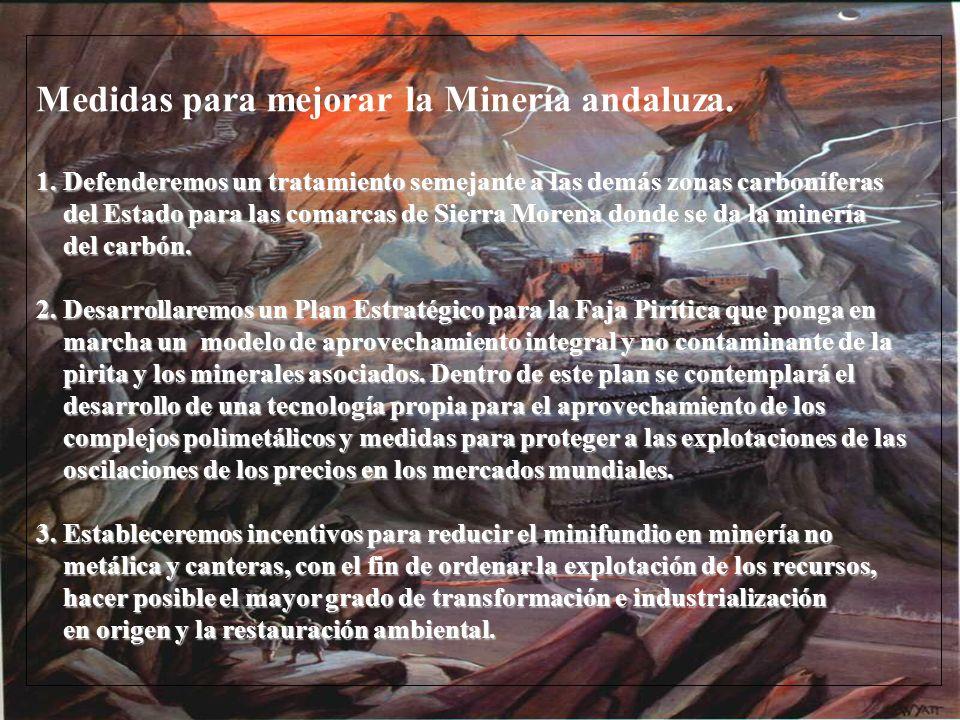 Medidas para mejorar la Minería andaluza. 1. Defenderemos un tratamiento semejante a las demás zonas carboníferas del Estado para las comarcas de Sier