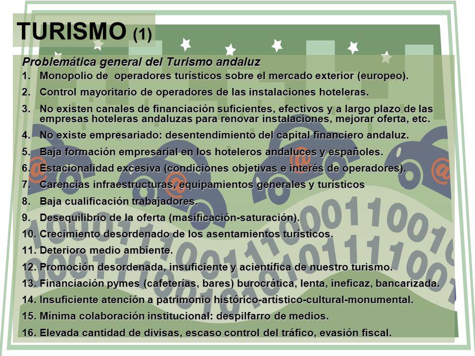 TURISMO (1) Problemática general del Turismo andaluz 1.Monopolio de operadores turísticos sobre el mercado exterior (europeo). 2.Control mayoritario d