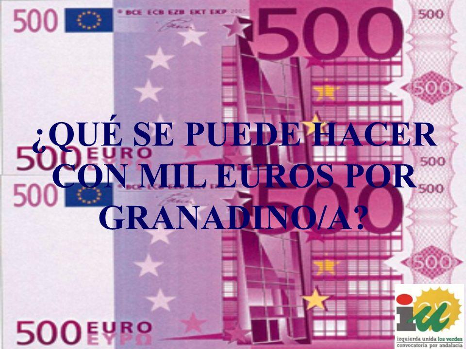 ¿QUÉ SE PUEDE HACER CON MIL EUROS POR GRANADINO/A