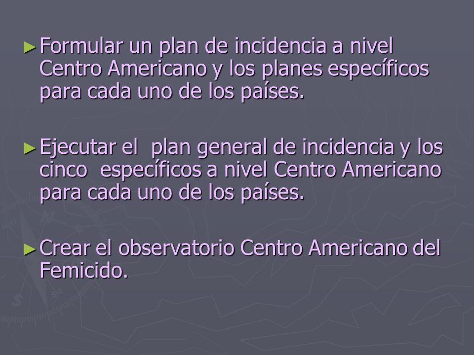Formular un plan de incidencia a nivel Centro Americano y los planes específicos para cada uno de los países. Formular un plan de incidencia a nivel C