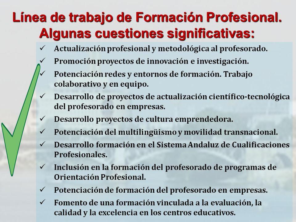 Línea de trabajo de Formación Profesional. Algunas cuestiones significativas: Actualización profesional y metodológica al profesorado. Promoción proye