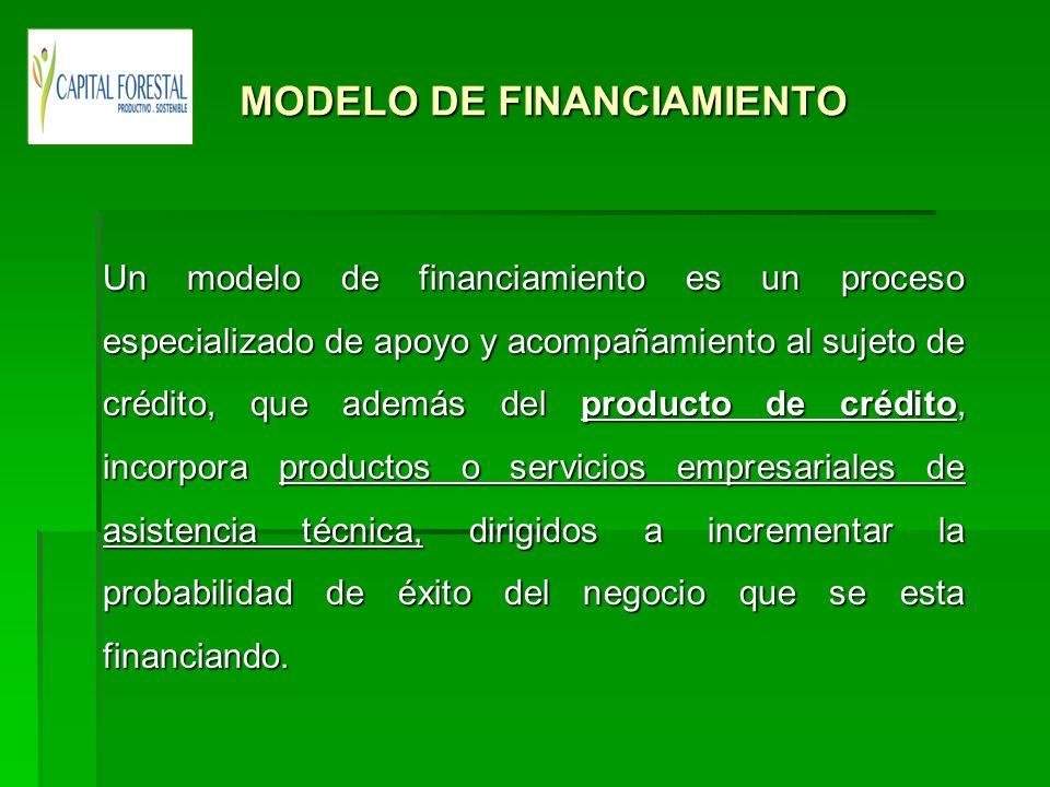 MODELO DE FINANCIAMIENTO MODELO DE FINANCIAMIENTO Un modelo de financiamiento es un proceso especializado de apoyo y acompañamiento al sujeto de crédi