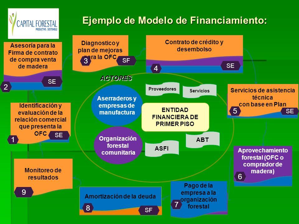 Aserraderos y empresas de manufacturaACTORES Organización forestal comunitaria Proveedores ENTIDAD FINANCIERA DE PRIMER PISO ASFI ABT Servicios Identi