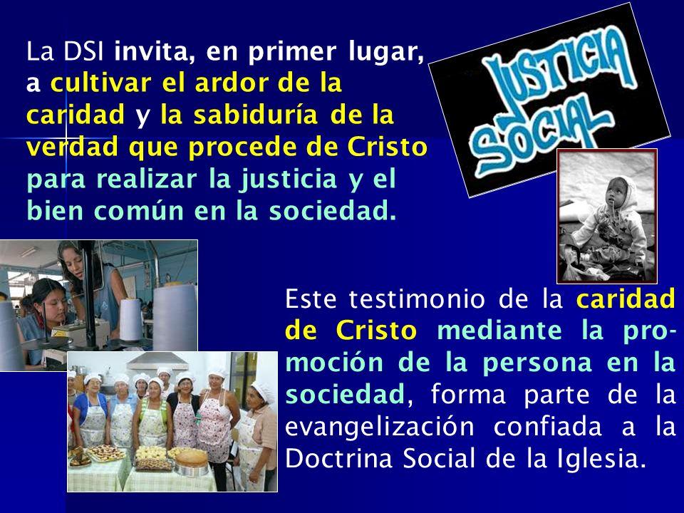 La DSI invita, en primer lugar, a cultivar el ardor de la caridad y la sabiduría de la verdad que procede de Cristo para realizar la justicia y el bie