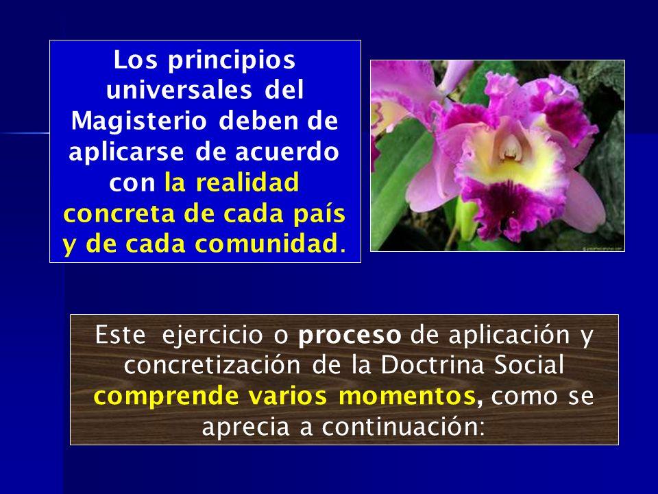 Los principios universales del Magisterio deben de aplicarse de acuerdo con la realidad concreta de cada país y de cada comunidad. Este ejercicio o pr