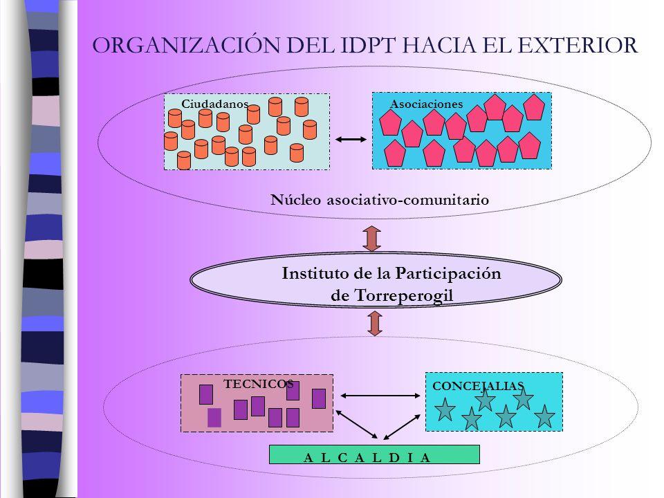 ORGANIZACIÓN DEL IDPT HACIA EL EXTERIOR A L C A L D I A Instituto de la Participación de Torreperogil Núcleo asociativo-comunitario AsociacionesCiudad