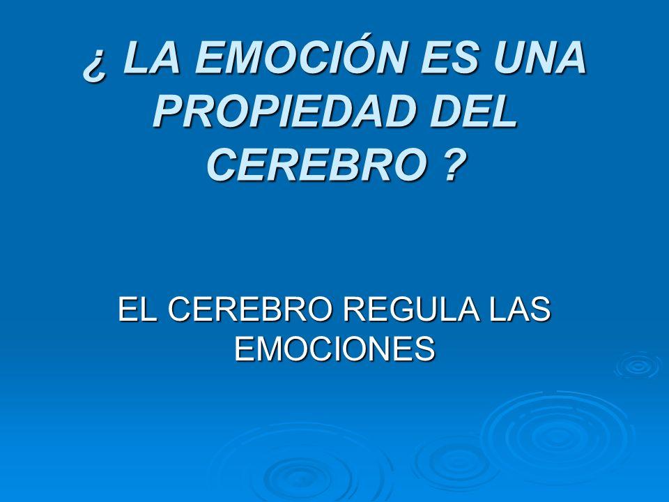 ¿ LA EMOCIÓN ES UNA PROPIEDAD DEL CEREBRO ? EL CEREBRO REGULA LAS EMOCIONES