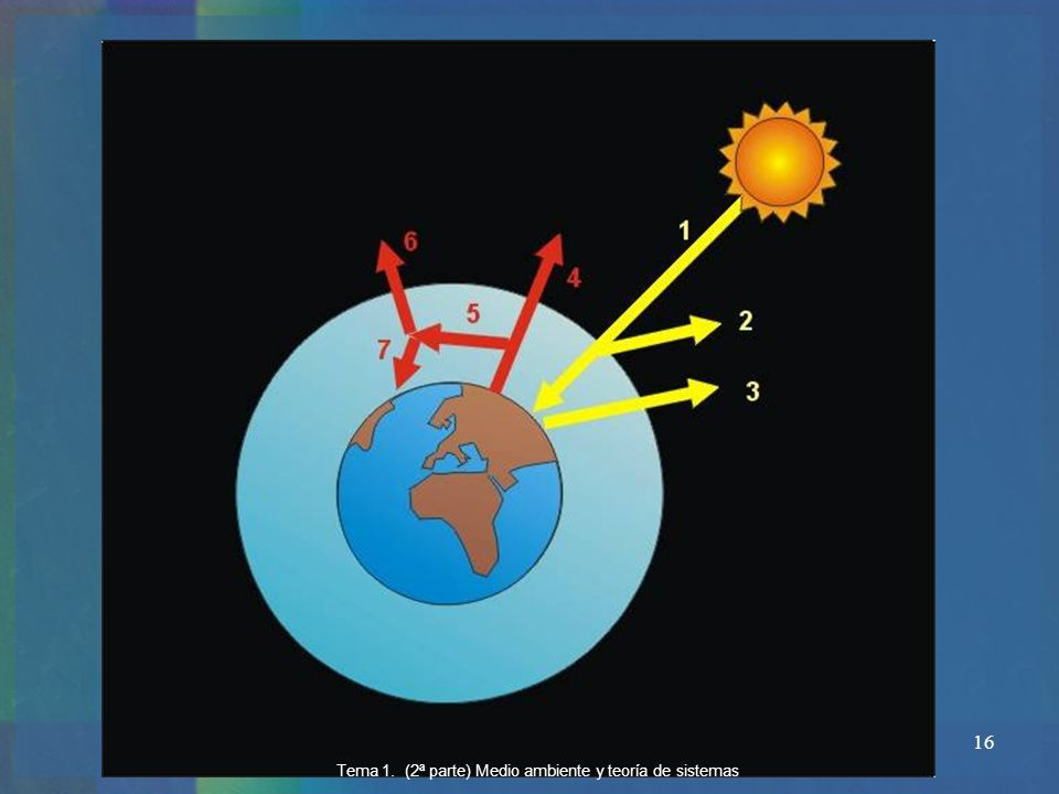 16 Tema 1. (2ª parte) Medio ambiente y teoría de sistemas