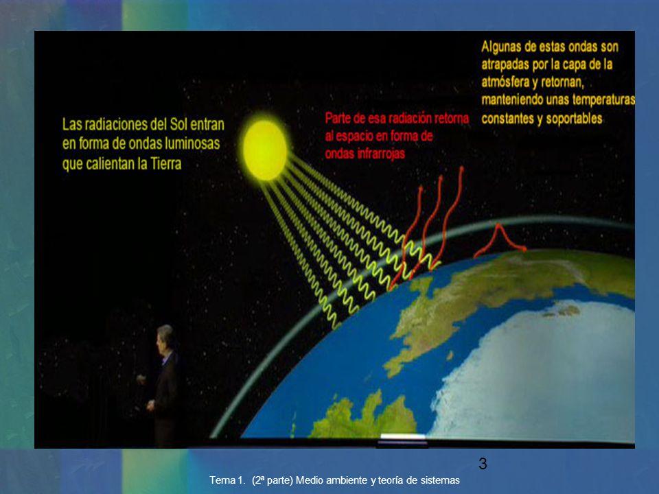 34 Tema 1. (2ª parte) Medio ambiente y teoría de sistemas MODELO 1. ENGLOBA LAS CINCO VARIABLES