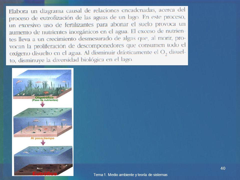 40 Tema 1. Medio ambiente y teoría de sistemas