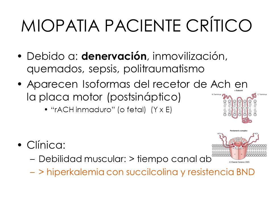MIOPATIA PACIENTE CRÍTICO Debido a: denervación, inmovilización, quemados, sepsis, politraumatismo Aparecen Isoformas del recetor de Ach en la placa m