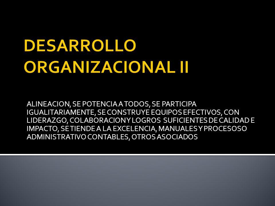 ALINEACION, SE POTENCIA A TODOS, SE PARTICIPA IGUALITARIAMENTE, SE CONSTRUYE EQUIPOS EFECTIVOS, CON LIDERAZGO, COLABORACION Y LOGROS SUFICIENTES DE CALIDAD E IMPACTO, SE TIENDE A LA EXCELENCIA, MANUALES Y PROCESOSO ADMINISTRATIVO CONTABLES, OTROS ASOCIADOS
