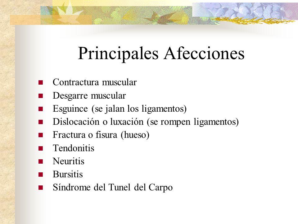 Principales Afecciones Contractura muscular Desgarre muscular Esguince (se jalan los ligamentos) Dislocación o luxación (se rompen ligamentos) Fractur