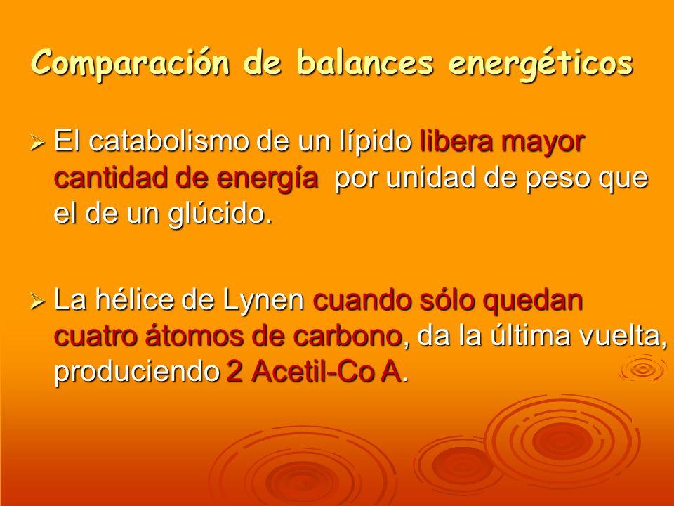 Comparación de balances energéticos El catabolismo de un lípido libera mayor cantidad de energía por unidad de peso que el de un glúcido. El catabolis