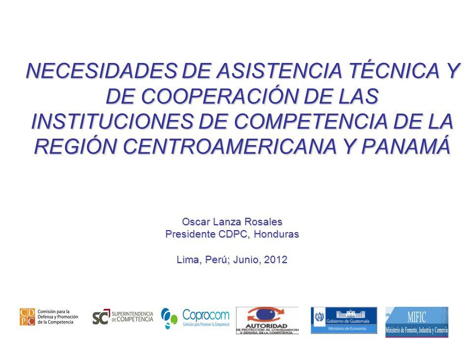 1 NECESIDADES DE ASISTENCIA TÉCNICA Y DE COOPERACIÓN DE LAS INSTITUCIONES DE COMPETENCIA DE LA REGIÓN CENTROAMERICANA Y PANAMÁ Oscar Lanza Rosales Pre