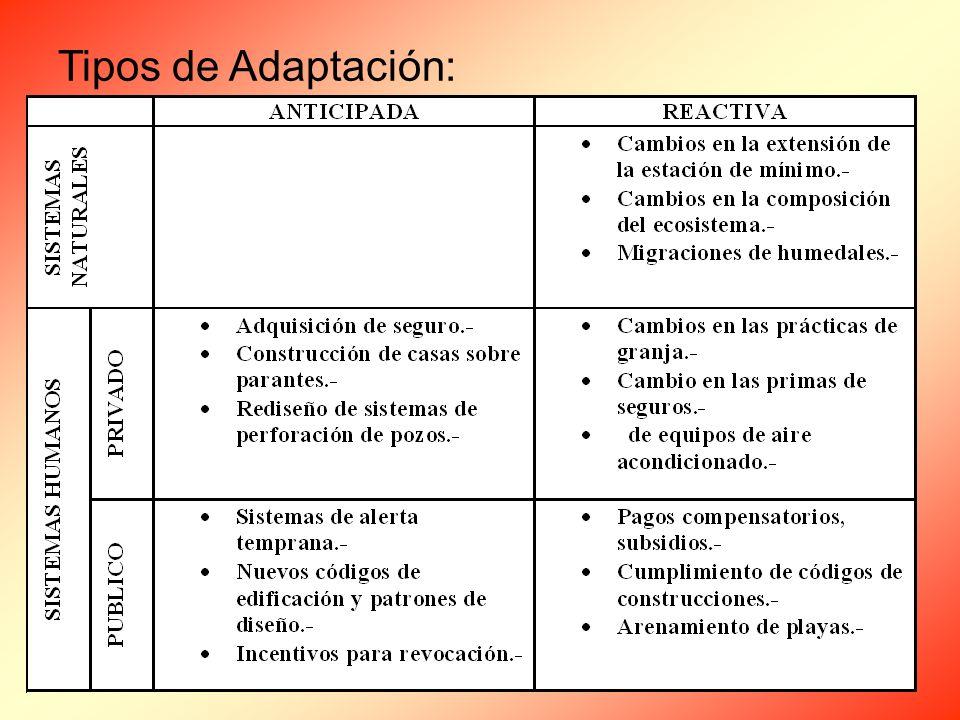 Tipos de Adaptación: