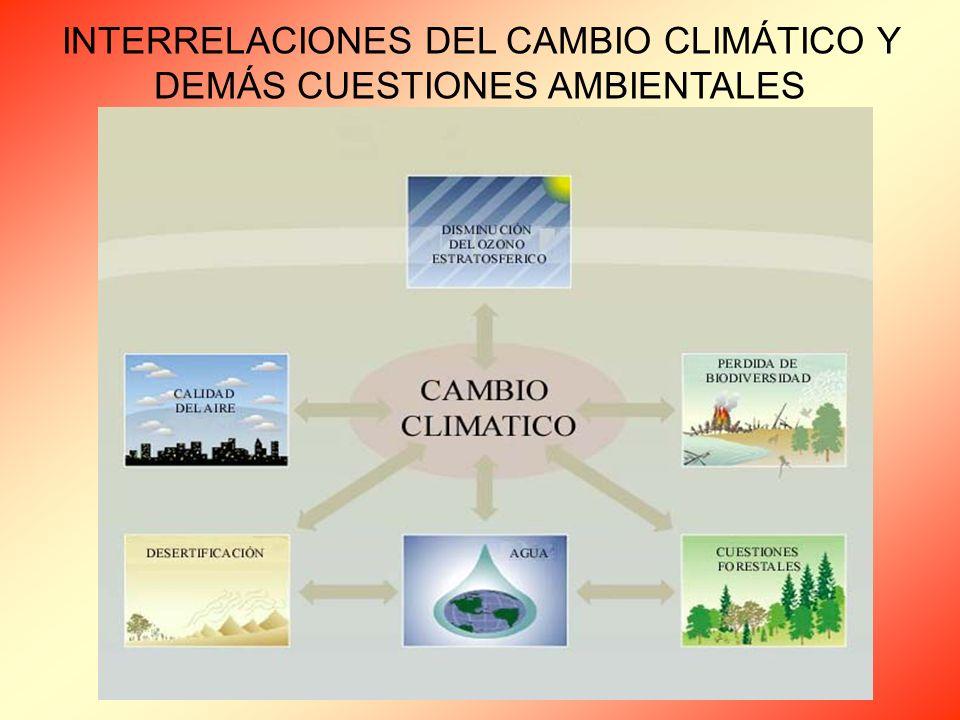 INTERRELACIONES DEL CAMBIO CLIMÁTICO Y DEMÁS CUESTIONES AMBIENTALES